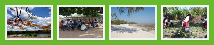 4 fotos fundo verde quadro branco horizontal 1