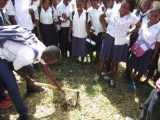 Educacao Ambiental (2)